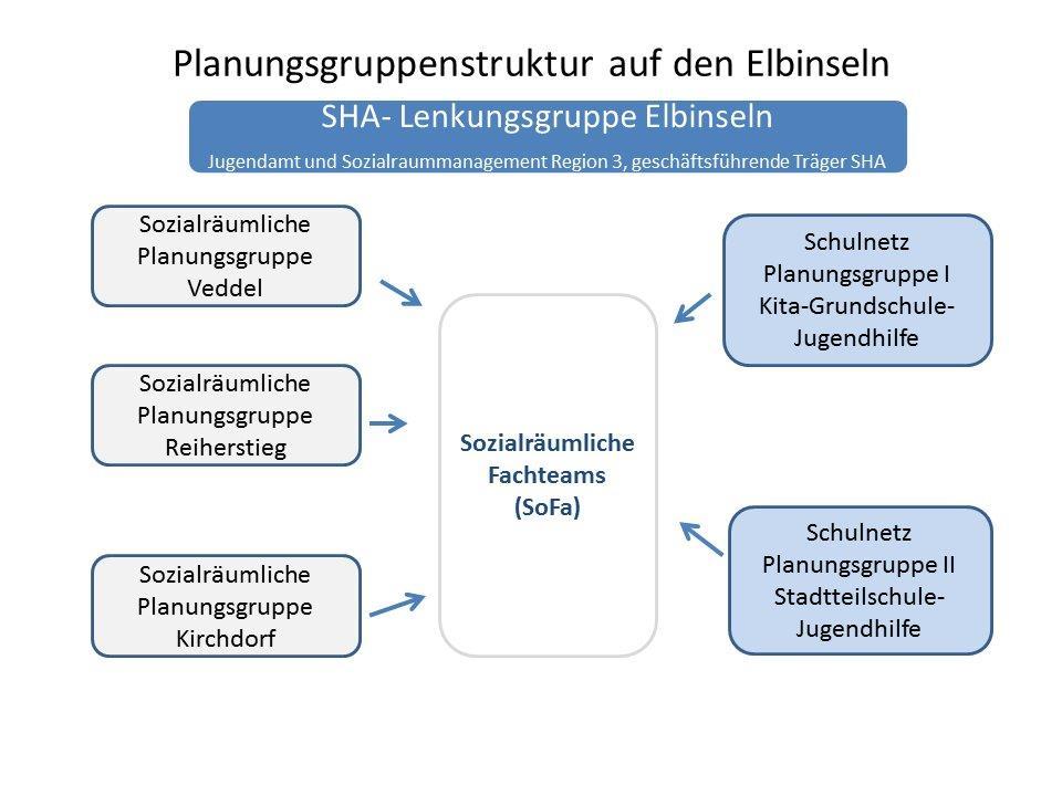 Planungsgruppenstruktur Elbinseln